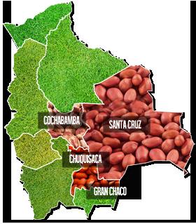 Zonas productoras de maní en Bolivia, Agrinuts